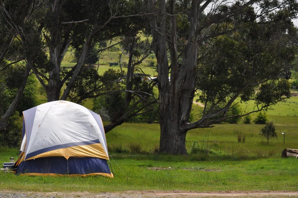 海外でキャンプ