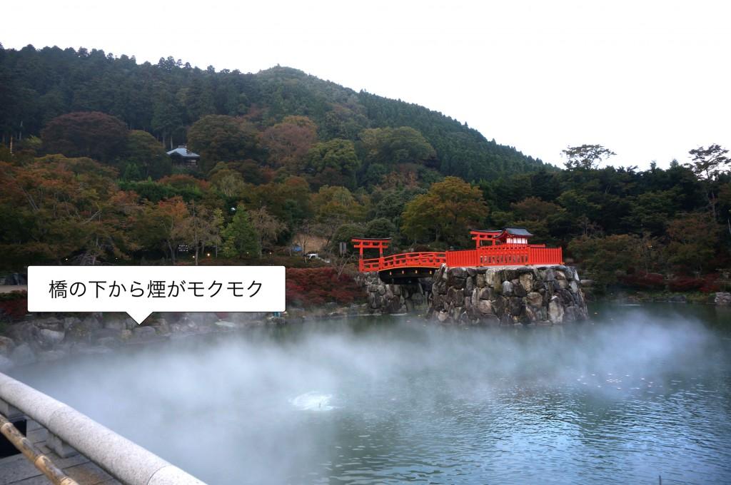 勝尾寺にある橋